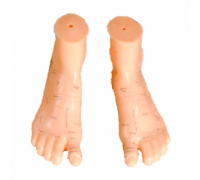 Модель для акупунктуры - Ноги (17см)